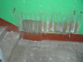 Покрасили подьезд (2).JPG