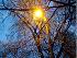 forum-okna.ru:  С Новым Годом! - последнее сообщение от Лёха